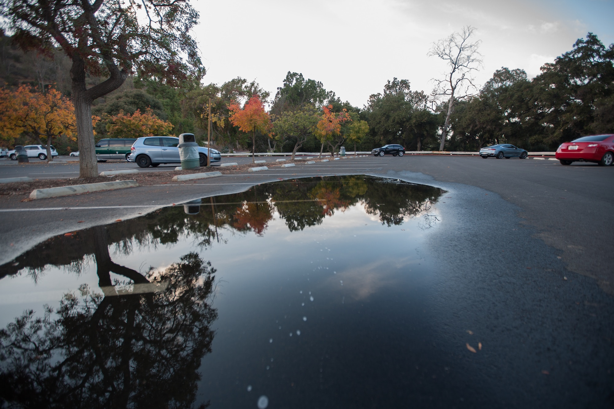puddles in autumn parking lot